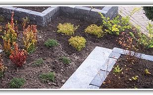 Tuinbeplanting & onderhoud